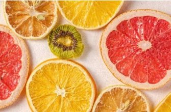 What to look for in a food dehydrator